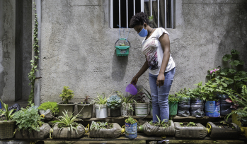 Gardening during lockdown in Ethiopia