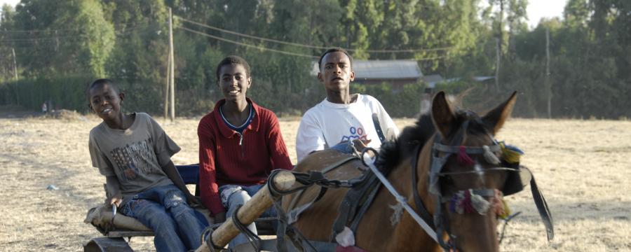 Three in a horse-drawn cart