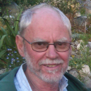 Professor Andrew Dawes, Research Associate