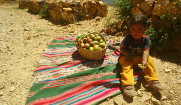 child with fruit basket