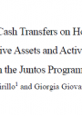 The Impact of Conditional Cash transfers on Households Investments in Productive Assets and Activities cover