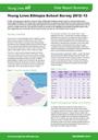 image_Ethiopia-school-survey-summary